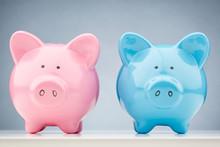 Pink And Blue Piggy Bank Toget...