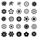 Fototapeta Kwiaty - flower vector set