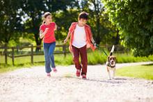 Hispanic Children Taking Dog F...