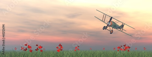 Valokuva Biplane on the grass - 3D render