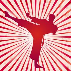 Panel Szklany Sztuki walki Vector cover karate