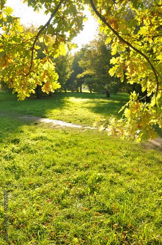 Keuken foto achterwand Bossen Beautiful autumn outdoor scenery