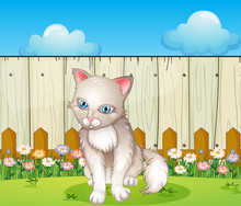 A Sad Cat Near The Wooden Fence