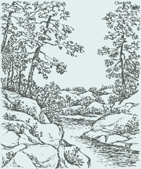 NaklejkaVector landscape. Trees on rocky bank of mountain stream