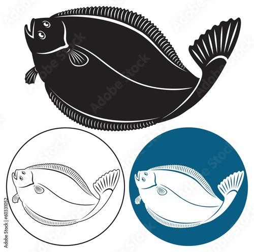 Fototapeta flatfish