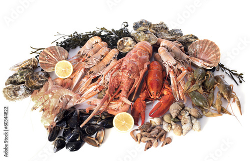 Photo Stands Seafoods seafood