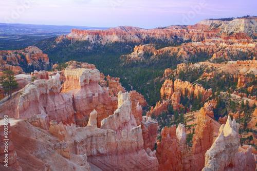 Tuinposter Canyon Bryce Canyon