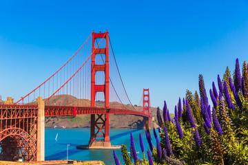 Fototapeta Mosty Golden Gate Bridge San Francisco purple flowers California