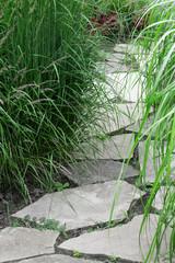 Fototapeta Stone path in the summer garden
