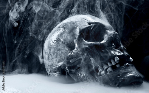 Photo череп