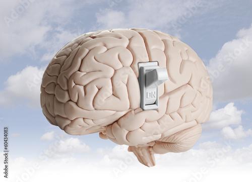 Photo  Brain power