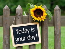 Today Is Your Day !