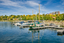 Yachts In Harbour And Autumn C...