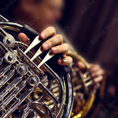 Hands of the man playing the French horn Wall mural