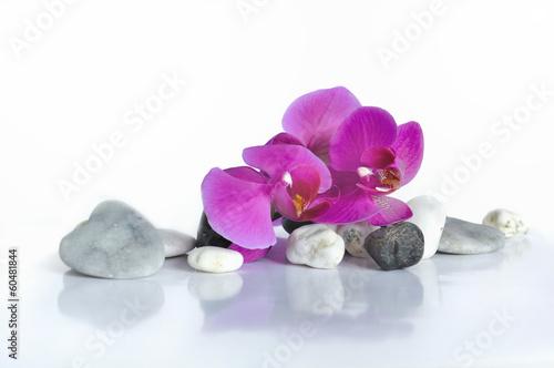 Fototapety, obrazy: orchidée et cœur en pierre