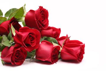 Fototapeta Bouquet of roses