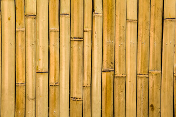 Panel Szklany Bambus bamboo texture
