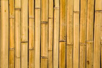 Fototapetabamboo texture