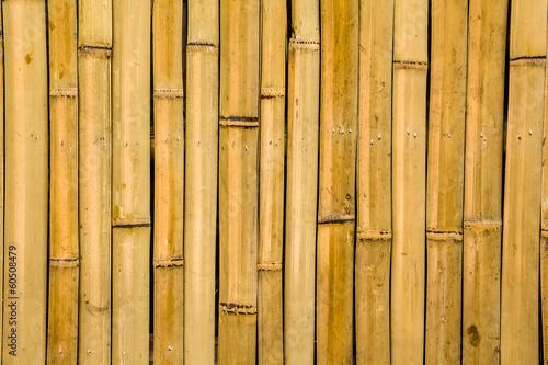 bamboo texture - 60508479