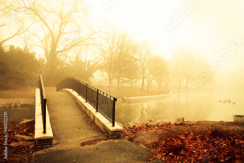 Plagát  Fog and golden morning light with footbridge of pond