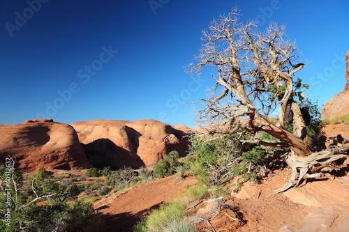 Fotobehang Natuur Park Utah landscape - Arches National Park