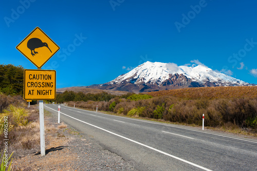 Photo sur Toile Nouvelle Zélande Kiwi and mount Ruapehu