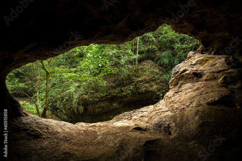 Green trees view from the inside of the cave Poster