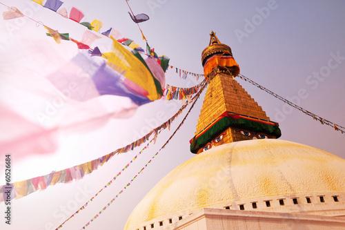 Staande foto Nepal Stupa in Nepal