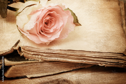 Foto-Lamellen (Lamellen ohne Schiene) - pink rose on an old book (vintage) (von Alina G)