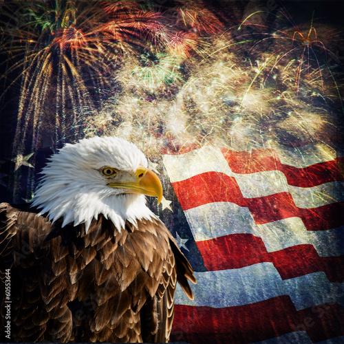 In de dag Eagle Bald Eagle & Fireworks
