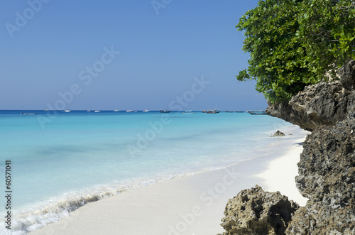In de dag Zanzibar Paradise beach at Zanzibar in Tanzania, Africa