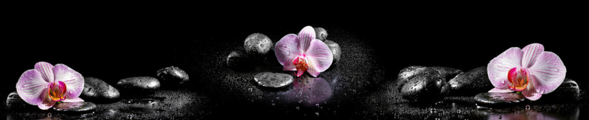 FototapetaHorizontal panorama with pink orchids and zen stones on black ba
