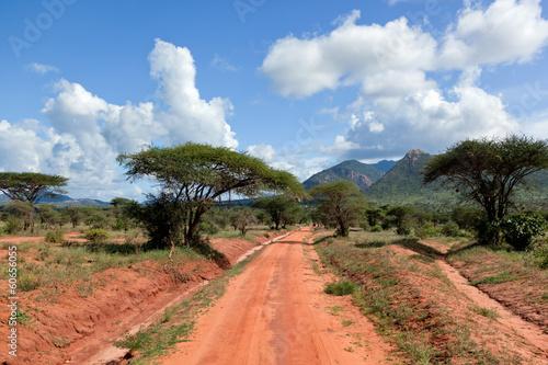 Fototapeta premium Rewolucjonistki zmielona droga, krzak z sawanną. Tsavo West, Kenia, Afryka