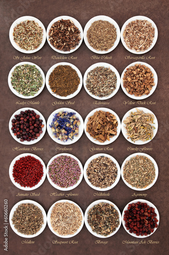 Medicinal and Magical Herbs - Buy this stock photo and