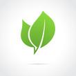 Eco icon green leaf