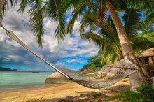 Hammock Between Palm Trees At The Seaside On A Tropical Island