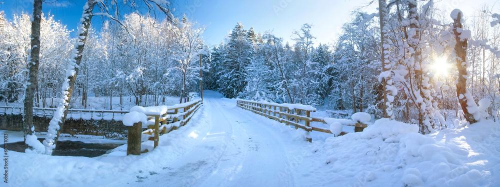 Panoramic view to bridge in winter