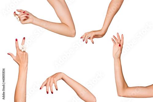 Foto Женские руки