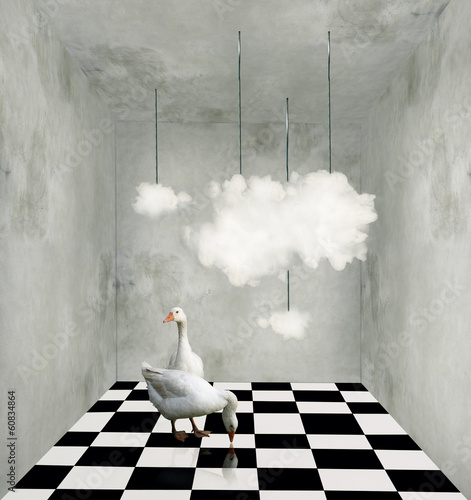 Cuadros en Lienzo Clouds and ducks in a surreal room
