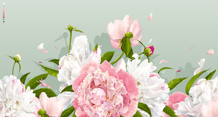 Panel Szklany Peonie Pink and white peony background