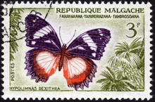 Postage Stamp From Madagascar,...