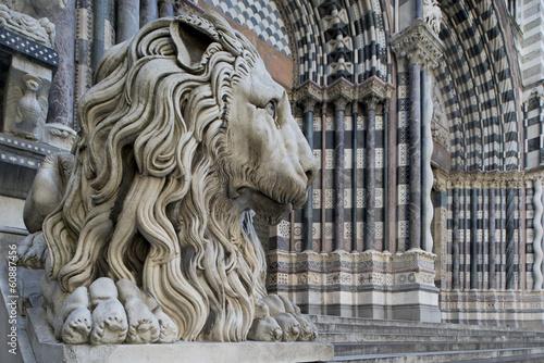 Fotografia  Lion of San Lorenzo, Katedra w Genui