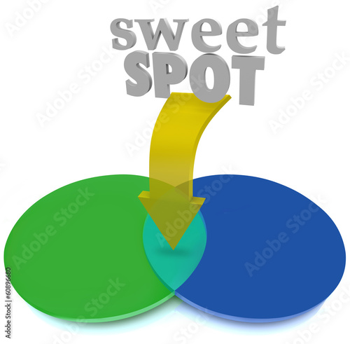 Sweet Spot Overlapping Venn Diagram Area Perfect Ideal Buy This