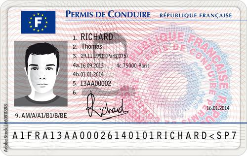 Nouveau permis de conduire français Tableau sur Toile