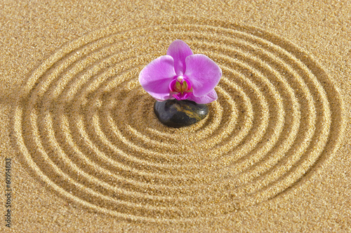 Fotografering  Japanese ZEN garden with stone in sand