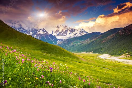 Poster Lime groen mountain landscape