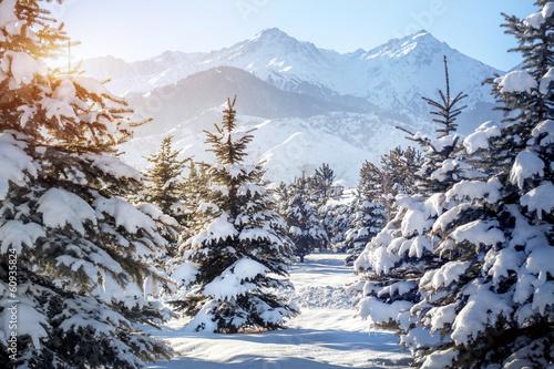 zimowa-sceneria-gorska