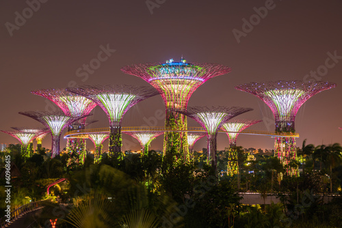 Photo  Gardens by the Bay - SuperTree Grove in Singapore