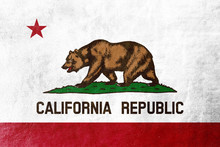 California State Flag Painted ...