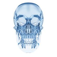 3d Rendered Illustration - Human Skull Made Of Glass
